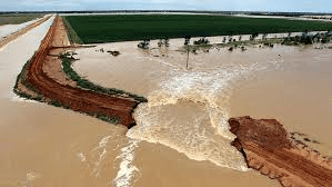 floodlevees