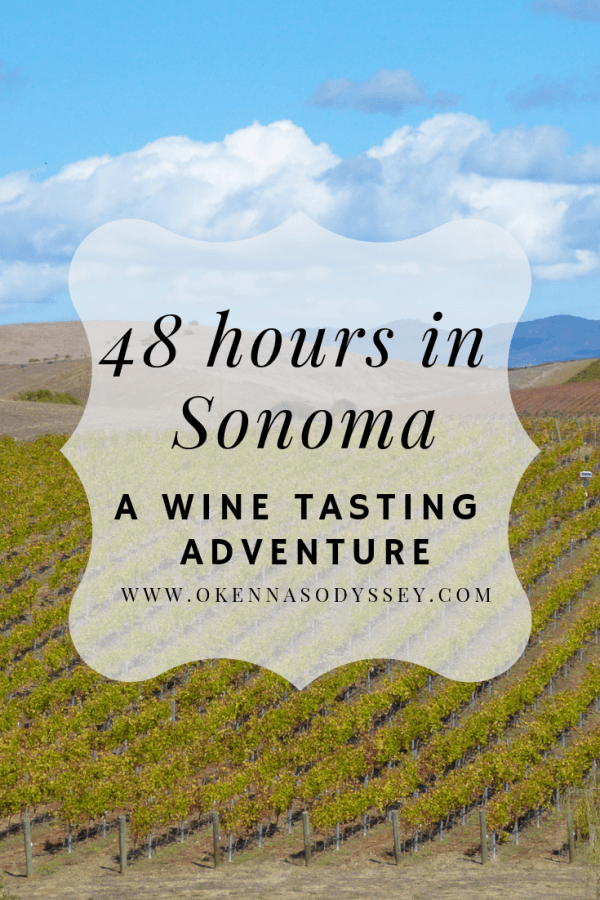Love wine and California sunshine? Here are tips on where to drink and eat in Sonoma County for a quick forty-eight hour wine tasting trip.