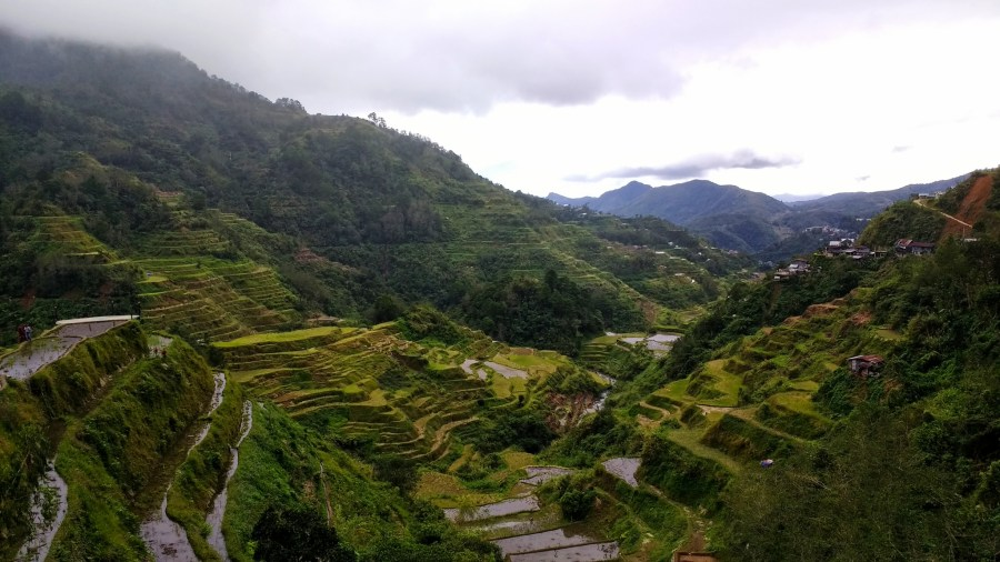 View of Huandung rice terraces