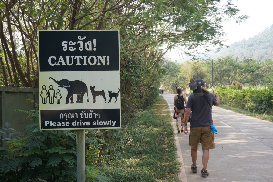 Elephant crossing signage, Thailand, volunteering, Elephant Nature Park