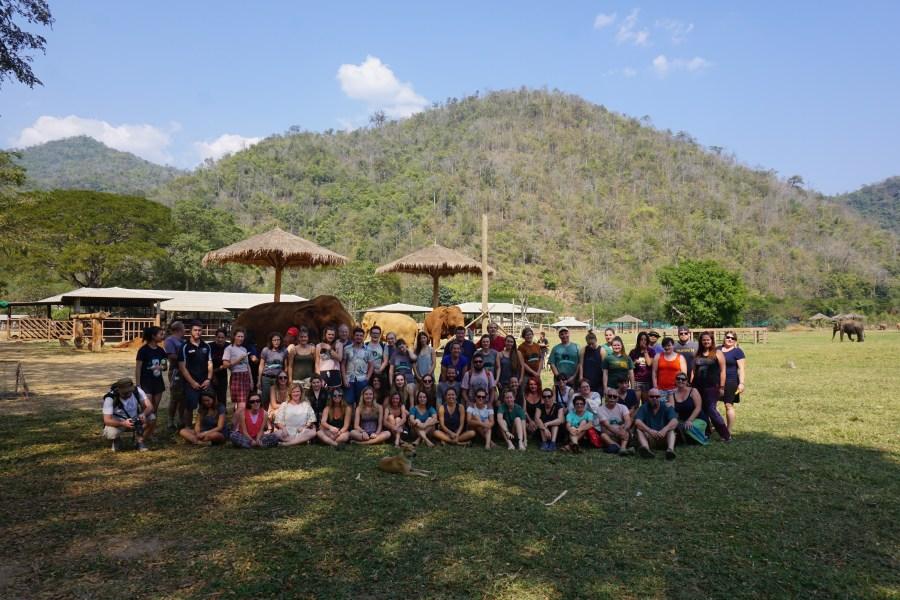 volunteers, responsible tourism, Elephant Nature Park, Thailand, awareness