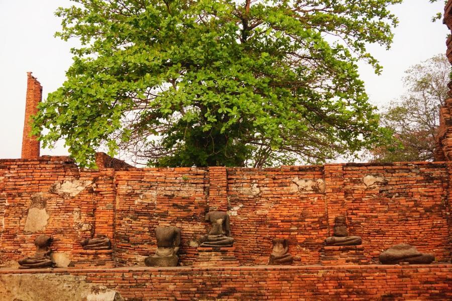 Ayutthaya, Thailand temple ruins.