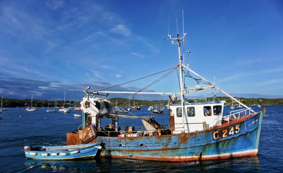 Schull Harbor, home of an annual regatta, in Ireland.