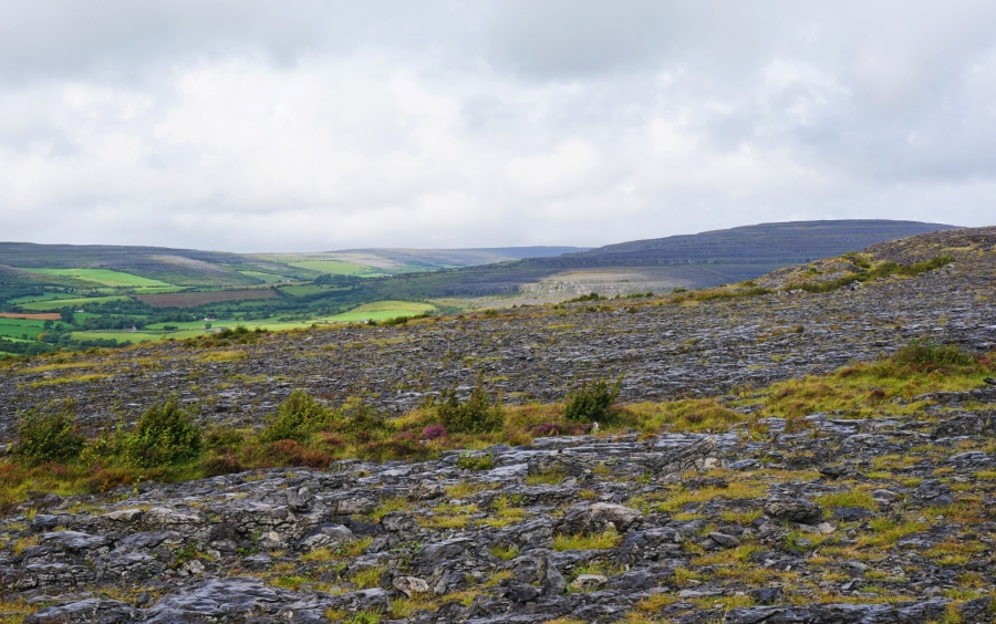 The Burren, Ireland is wild and has striated rock formations mixed with wildflowers.