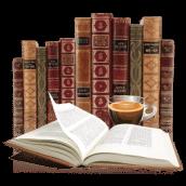 Books 2 icon - La loi des séries