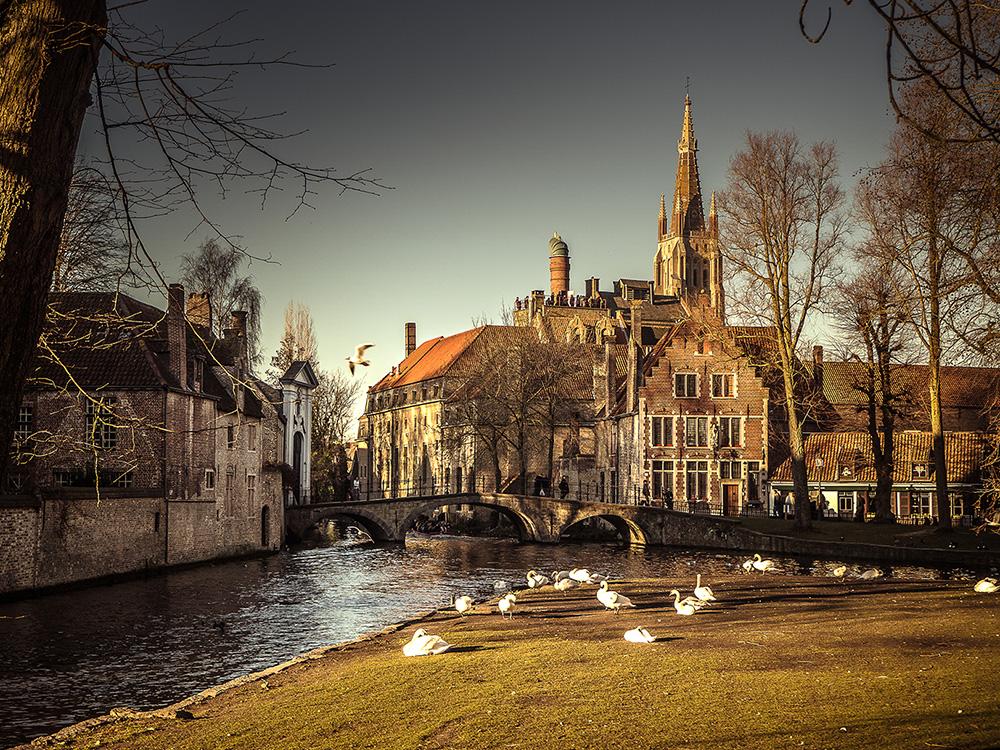 belgique 300 87 - Bruges - 2019