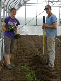 Elisa and Luke planting tomatoes in the hoop house.