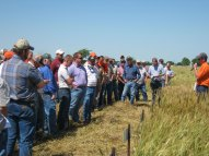 OSU/Oklahoma Wheat Commission plot tour.
