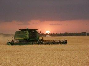 Harvest-2012-(203)