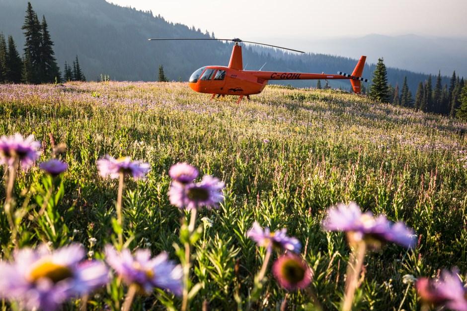 Sun Peaks Alpine Blossom Festival - OK Heli Tours
