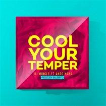DJ Mingle ft. Akoo Nana – Cool Your Temper