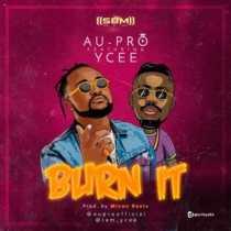 Au-Pro ft. Ycee – Burn It