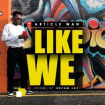 Article Wan – Like We