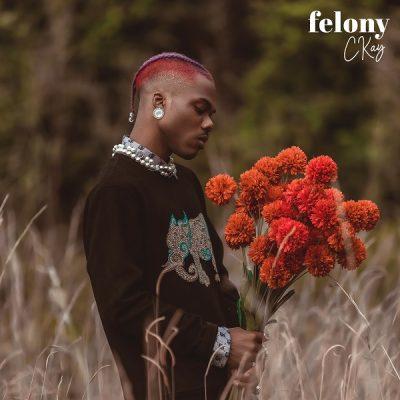 Ckay – Felony