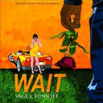 Sage ft. Tunsoft – Wait