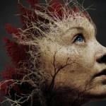 Las Samobójców -recenzja