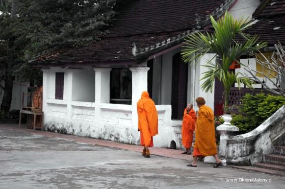 Mnisi, Luang Prabang