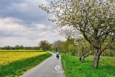 szlak-rowerowy-droga-tylko-dla-rowerow-brandenburgia-2016-szymon-nitka-5778