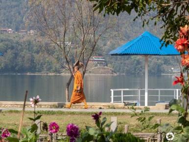 buddyjski mnich i Phewa Tal, Pokhara