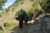 Ciężka codzinna praca mieszkańców wiosek, my to nazywamy trekkingiem ..