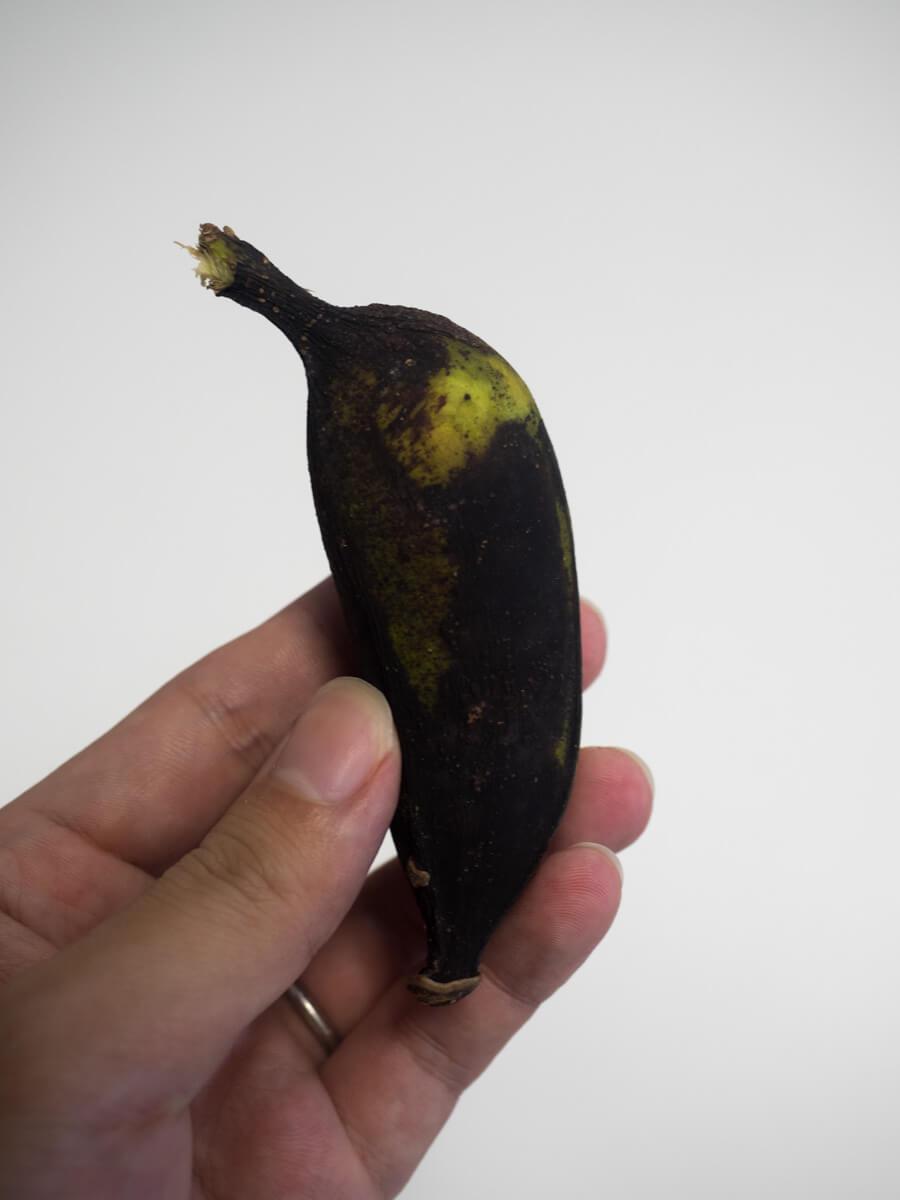 島バナナ小さい