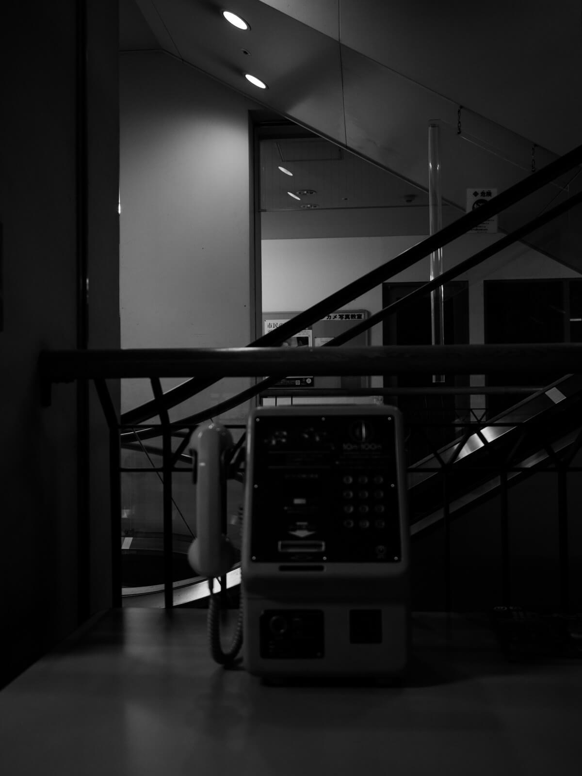 コリンザ白黒写真3