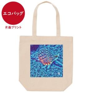 海と自然塾ビティ No.38(エコバッグ)
