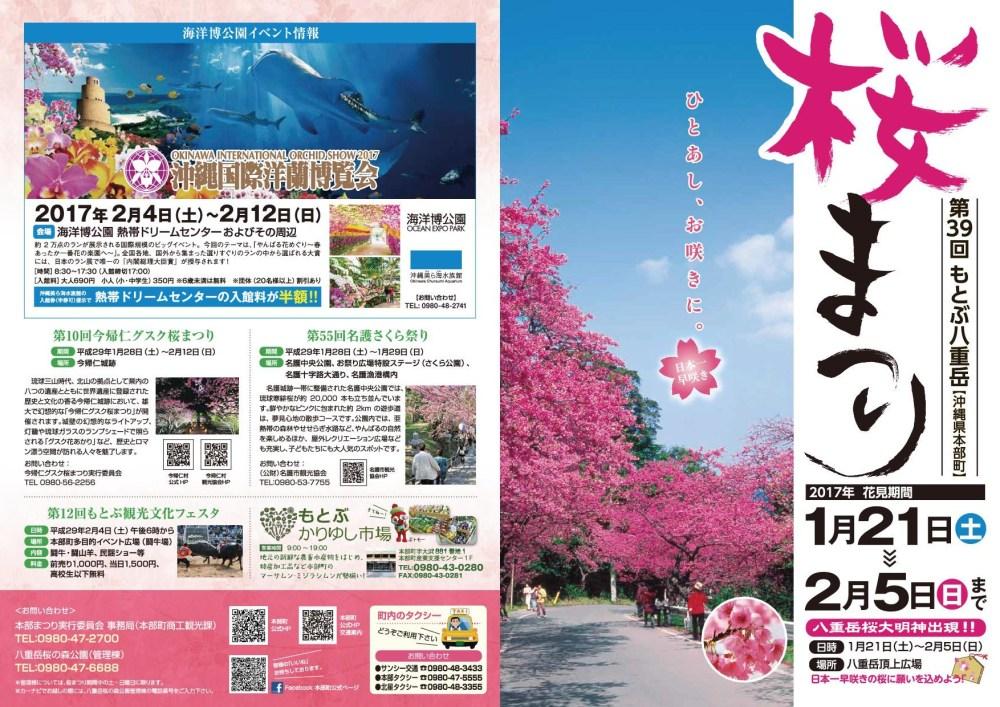 第39回 本部八重岳桜まつりのフライヤー2