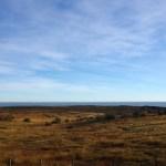 その時頭に浮かぶものは~Rio Grande南60km