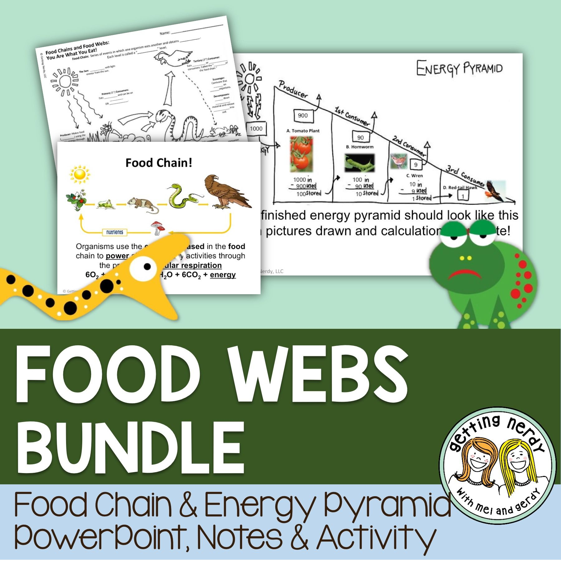 Food Chain Coloring Pages Gallery