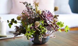 Succulent Flower Arrangements Blooms That Go from Summer to Fall