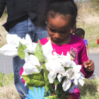 Ty Titus, 4, looks at flowers she picked out for a memorial honoring her uncle,  Khyre Campbell. Family members set up the makeshift memorial in Gilcrease Hills, near the  location where Campbell's remains were found.