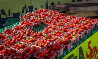 Jordbær på Gladmat
