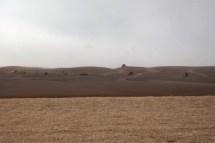 Dalijeva pustinja