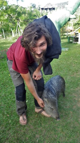 Luka i svinjče