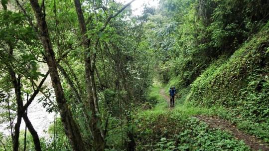 Put uz rijeku je trajao duplo duže jer smo stalno stajali i tamanili jagode.