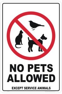 no pets allowed at okonjima