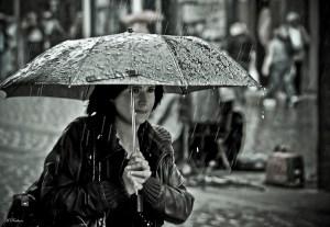 Photo by Hamed Parham.