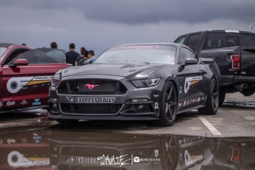 ifo (48 of 91)