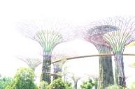 Super Tree Singapore
