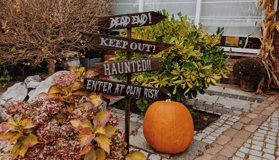 Halloween Wegwijzer maken