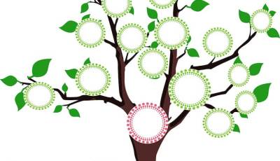 come fare un albero genealogico creativo