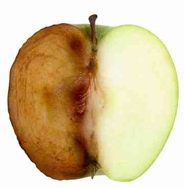 Elma kesilince niçin kararıyor?, OkuGit.Com - Tarih, Güncel, Kadın, Sağlık, Moda Bilgileri Genel Bloğu