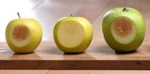 elma2 300x149 - Elma kesilince niçin kararıyor?