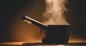 y2 8 300x163 - İnsanlar yiyeceklerini niçin pişirerek yerler ?