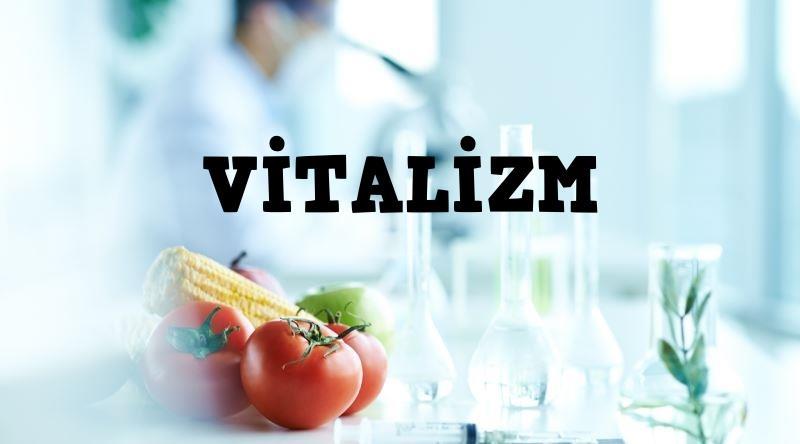 Vitalizm – Dirimselcilik Nedir ?, okugit