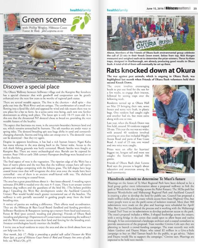 rats-knocked-down-at-okura-hibiscus-matters-15june2016