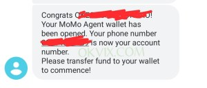 How to become a MoMo agent in Nigeria | Beginner's full guide