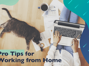 woman-work-home-cat