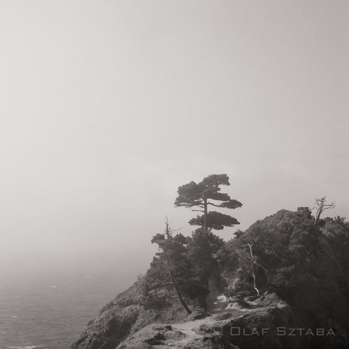 ©osztaba_sf_13-08-26__DSF8319-Edit